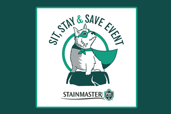 Thumbnail - blog-featured-sit-stay-save