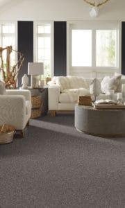 Shaw Lifeguard Waterproof carpeting and rugs