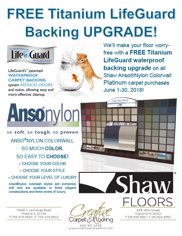 Shaw AnsoNylon Colorwall Sale Flyer