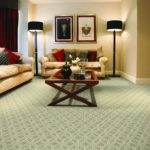 Brand: Stanton | Collection: Stainmaster Pet Protect | Style: Pioneer Vector | Color: Champagne