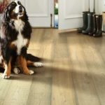 Flooring Type: Hardwood | Brand: Shaw | Style: Exquisite | Color: Acadia