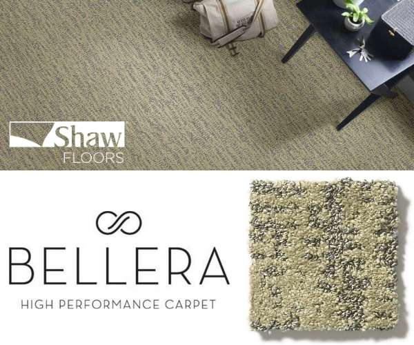 Shaw Floors - Obvious Choice in Chameleon
