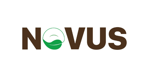 Image of Novus Floors