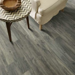 Shaw Floors - Cades Cove in Burleigh Taupe